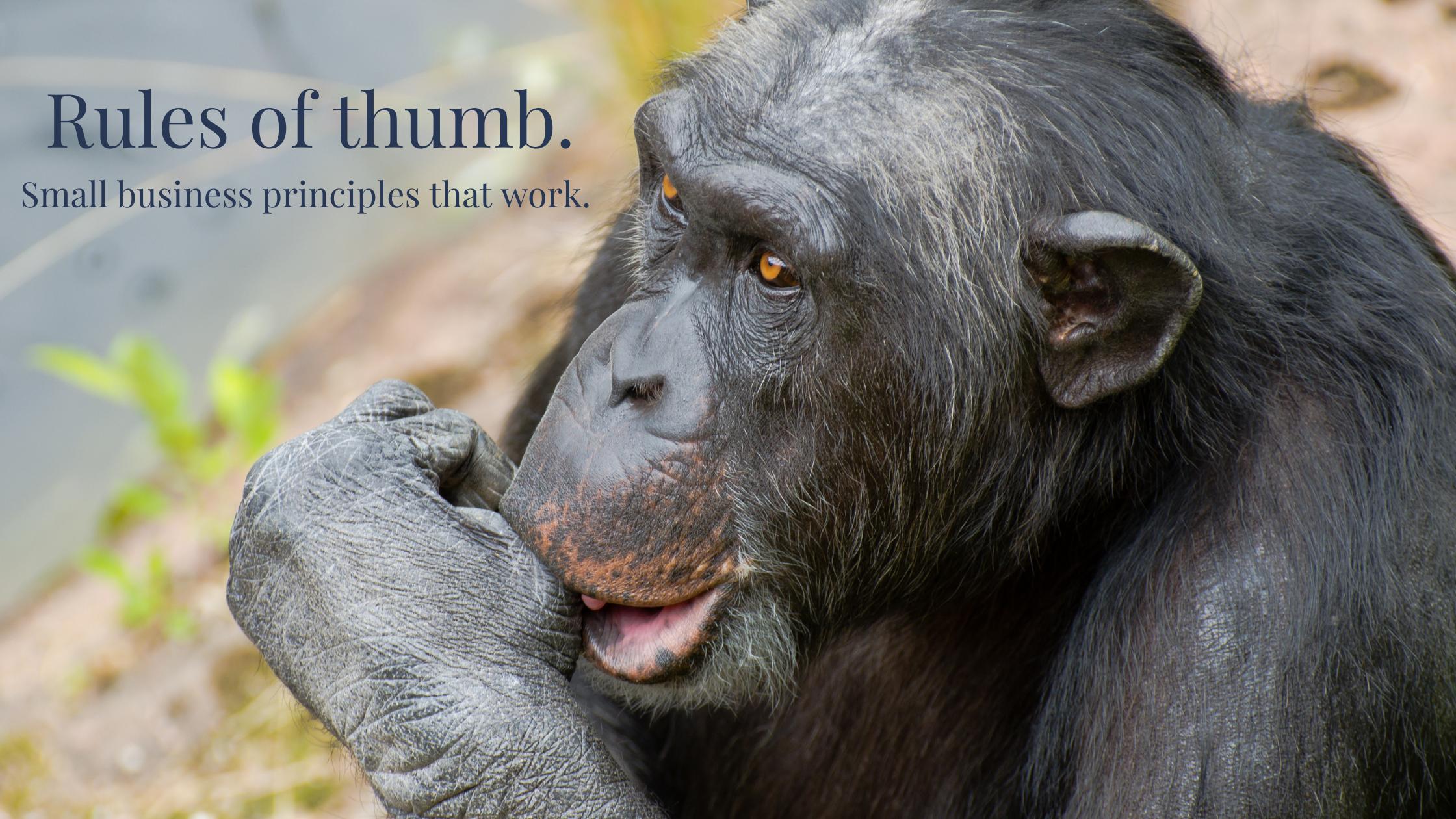 Monkey sucking thumb
