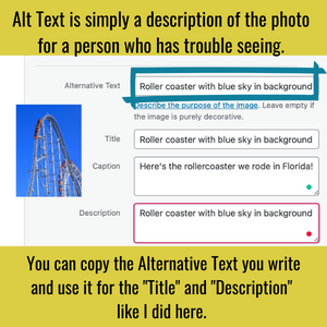 Graphic image showing a screenshot of an Alt Text page with a rollercoaster image.
